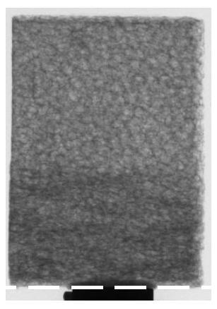 Compression of Alporas foam (U. Ramamurthy, IISC, Bangalore)